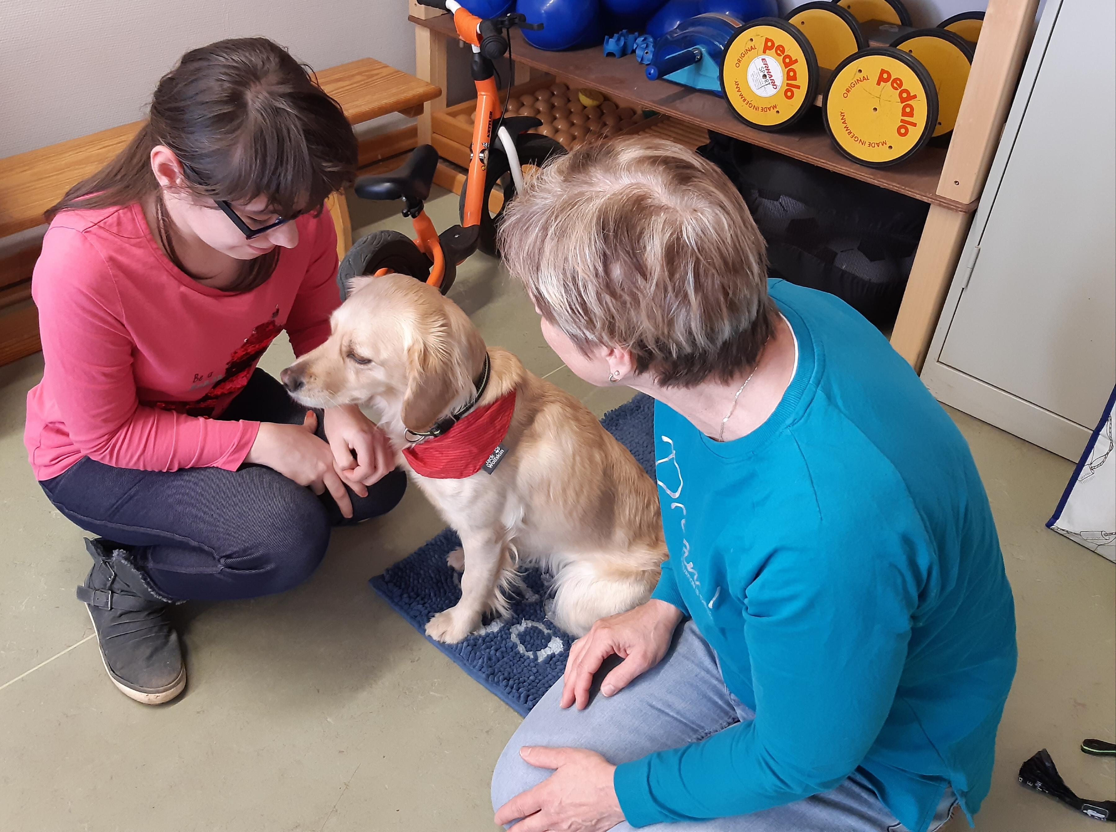 Besuchshunde und Therapiehunde in Magdeburg, Eisleben und Goslar