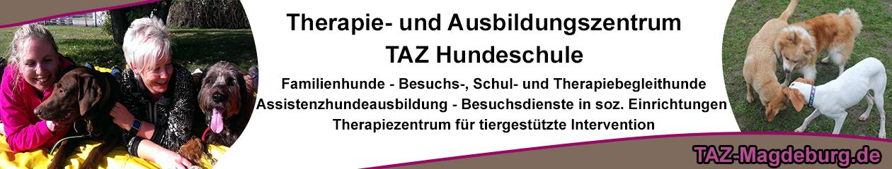 TAZ Hundeschule Magdeburg – Ausbildung und Training seit 2007